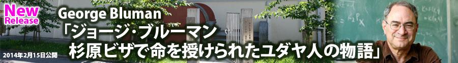 bluman_banner
